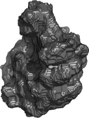 Voxel - Image: Ribo Voxels