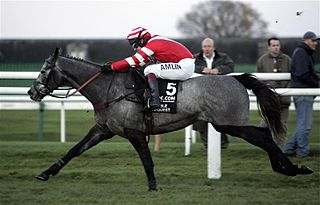 Richard Johnson (jockey)