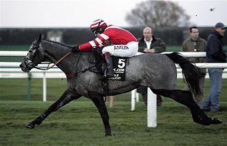 Richard Johnson (jockey) - Richard Johnson on Noble Request at the 2006 Fighting Fifth Hurdle