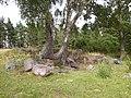 Ringstad, fornlämningsområdet, den 10 juli 2007, bild 17.JPG