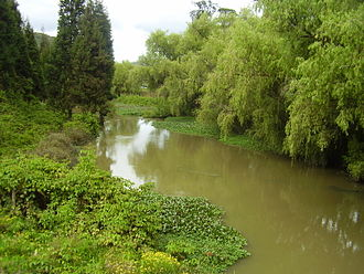 Chaquén - Wet reeds around the Bogotá River condemnation of Sunuba