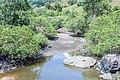 Rio Sinunga 0042.jpg