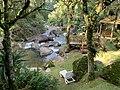 Rio e cachoeiras cortando o jardim da Pousada Jardim das Águas em Visconde de Mauá.jpg
