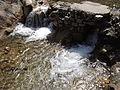 Rishikesh harikempty fallsdwar (381).JPG
