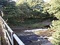 River Lossie - geograph.org.uk - 1528556.jpg