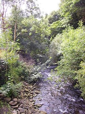 Rhondda - River Rhondda in the Fawr Valley near its source in Blaenrhondda