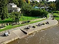 River Wharfe, Wetherby - geograph.org.uk - 260825.jpg