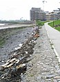 Riverside Walk Flotsam at Greenhithe - geograph.org.uk - 853904.jpg
