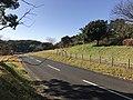 Road near Unzen Resort Hotel 2.jpg
