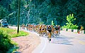 Road racing in 1975 Red Zinger Bicycle Classic.jpg