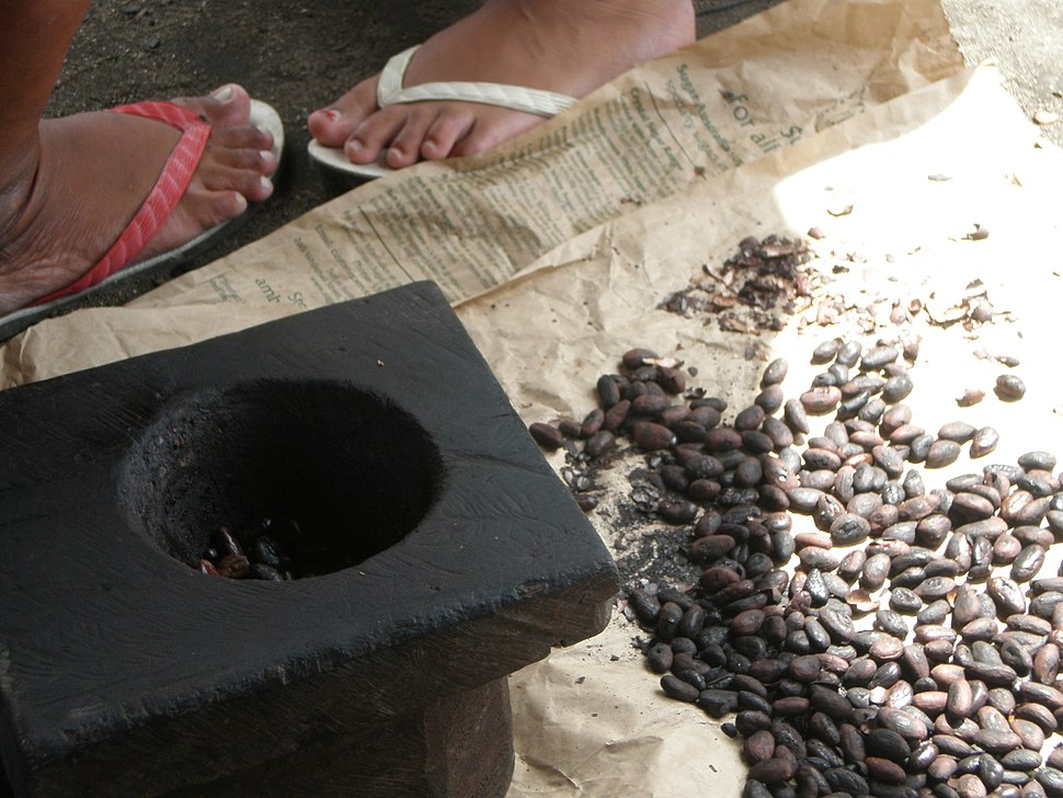 Roast cocoa beans ready to pounded into a paste for the Samoan koko drink.