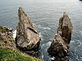 Rocky coast of Tory Island - geograph.org.uk - 674001.jpg