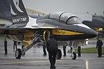 Rokaf T-50 (Black Eagles) (7544325180).jpg