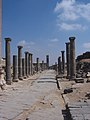 Roman ruins in citadel at Bosra, Syria..jpg