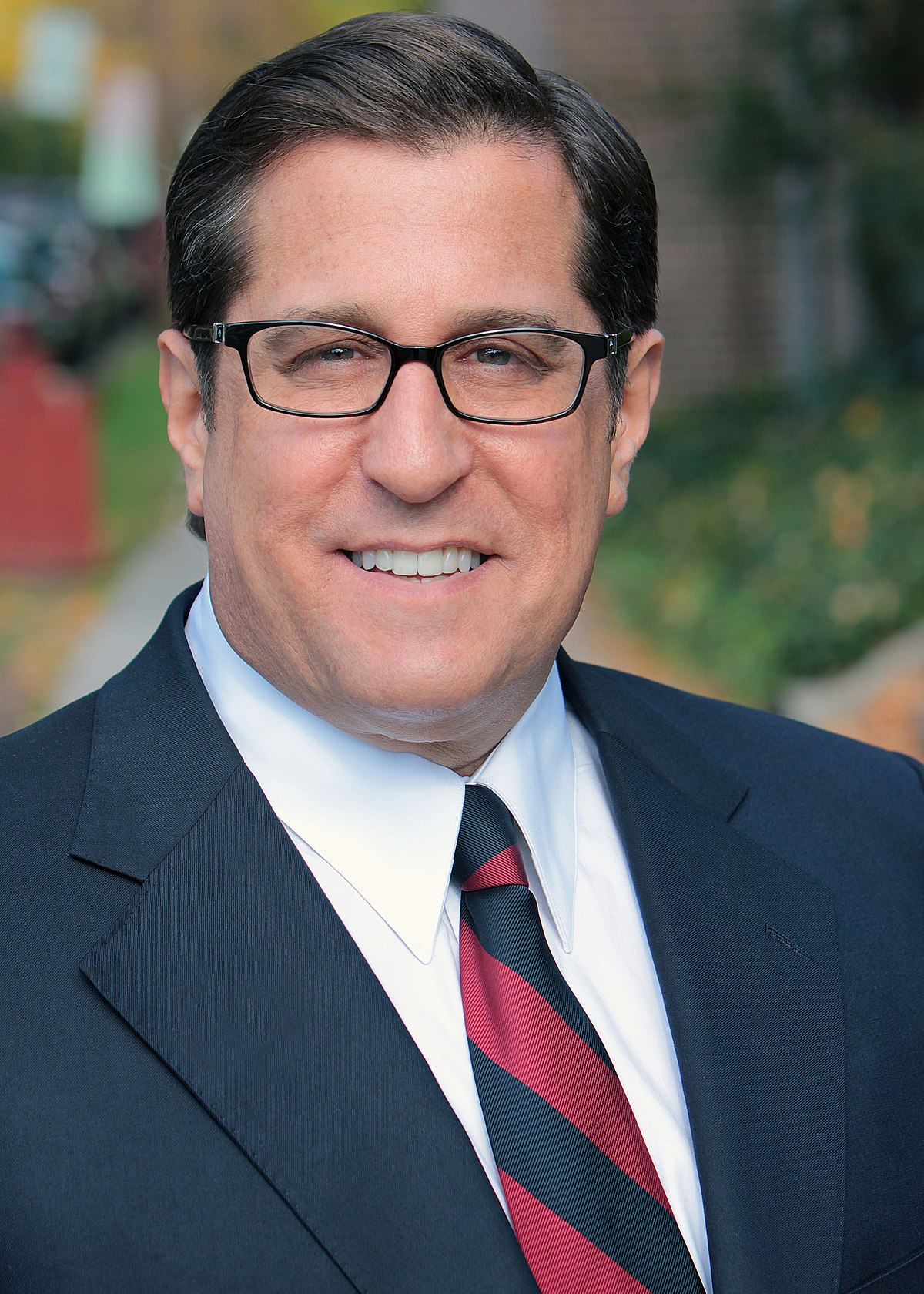 Re Districting >> Steve Rothman - Wikipedia