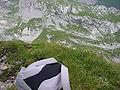 Rotsteinpass 5330.jpg
