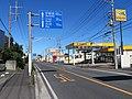 Route 4 SaitamaPrefecture Satte City 1.jpg
