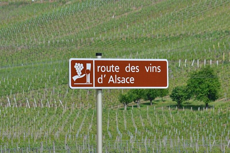 Fichier:Route des Vins d'Alsace.JPG
