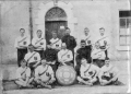 Royal Irish Regimental Shield Image.png