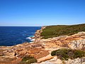 Royal National Park Coast Track - panoramio.jpg