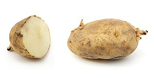 Russet potato with sprouts. Sliced (left) and ...