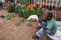 Rwanda plantains.jpg