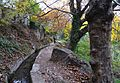 Séquia paral·lela al riu Palància, Sogorb.JPG