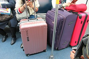 SZ 深圳 Shenzhen 福田區 Futian Port Metro train interior Jan-2017 IX1 Luggages red purple pink.jpg