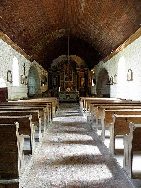 Église Saint-Loup de Saint-Loup-du-Gast (53). Nef.