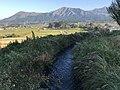 Sakogawa River and Mount Asosan.jpg