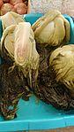 Salted vegetables 2.jpg
