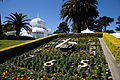 San Francisco Conservatory of Flowers-6.jpg