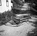 Sani s kripo - z njimi vlačijo gnoj po njivah, ki so v bregu. U Bregu, Gorenji Novaki 1954.jpg