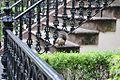 Savannah Historic District 33.JPG