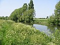Saxon Shore Way following the River Stour to Grove Ferry - geograph.org.uk - 459868.jpg
