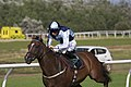 Scottish Racing Handicap 2933 (4924052646).jpg