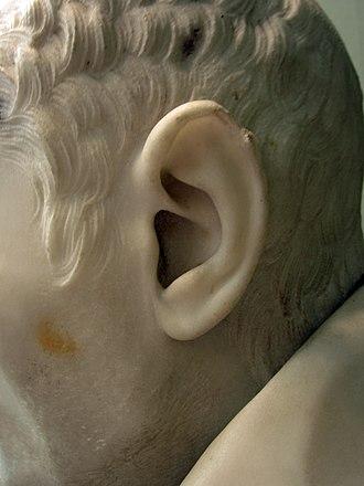 Bust of Alessandro Peretti di Montalto - Image: Sculpture of Cardinal Montalto by Bernini 3