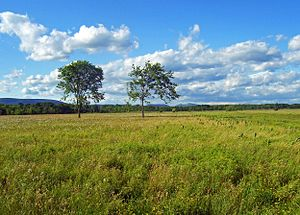 Shawangunk Grasslands National Wildlife Refuge - View of the Shawangunk Ridge from within the Shawangunk Grasslands National Wildlife Refuge.