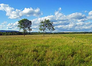 Shawangunk Grasslands National Wildlife Refuge Protected area in Ulster County, New York