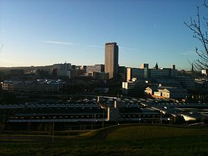 Economy of Sheffield - Sheffield Central Business District