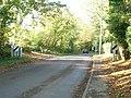 Shere Road, Ewhurst - geograph.org.uk - 71007.jpg