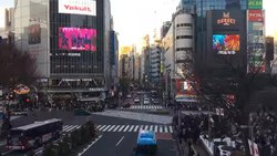 ファイル:Shibuya crossing time-lapse 2019-01-05.webm