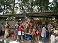 Shop selling from Lalbagh flower show Aug 2013 8652.JPG