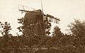 Shottenden Perry Wood 1919.jpg