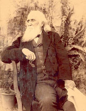 John Robertson (premier) - Image: Sir John Robertson