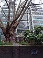 Site of St. John Zachary - 25 Gresham Street London EC2V 7HN.jpg
