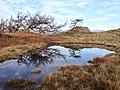 Skelwith, UK - panoramio (2).jpg