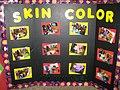 Skin color project.jpg