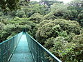 Sky Walk 13, Monteverde, Costa Rica.jpg