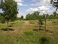 Slanska hora CZ trail stop 07 112.jpg